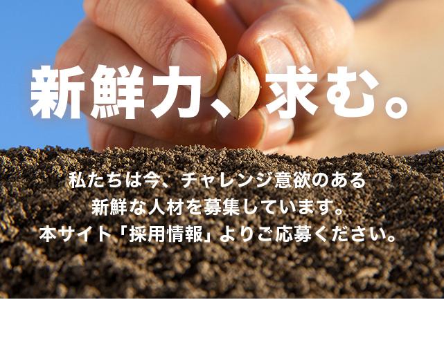 main_img02-2.jpg